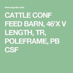 CATTLE CONF FEED BARN, 46'X V LENG