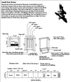 Bat House Information