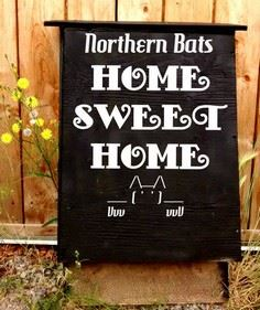Northern Bat House