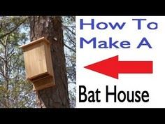How to Make a Bat House