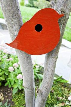 DIY Birdhouse For The Birds