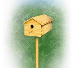 Birdhouse | TIMBER MART