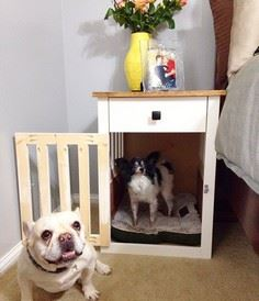 Going to the Dogs--DIY Dog Crate