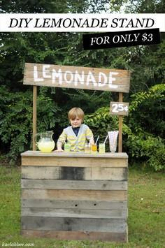 DIY Roadside Lemonade Stand