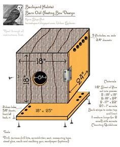 Newly Designed Barn Owl Nesting Box