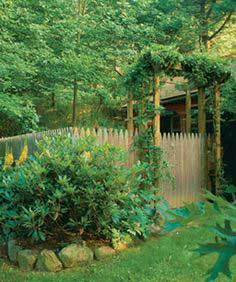Simple arbor provides support for sweet autumn clematis