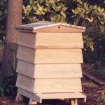 Bee Hive Plans