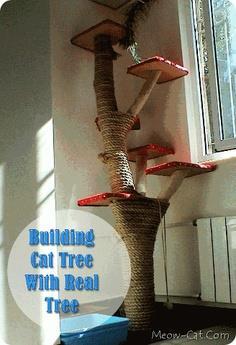 Cat tree plans scratching posts cat platforms ladder plans for Build a cat perch