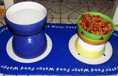 Pet Food Dish #howto #tutorial