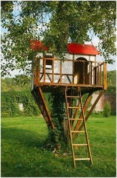 Learn How to Build a Treehouse