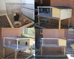 Build a rabbit hutch plans
