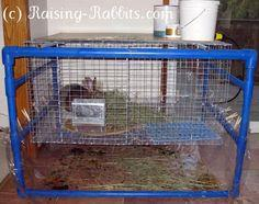Very Cool PVC Frame for Indoor Rabbit Cages