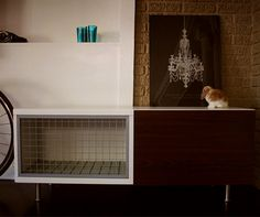 DIY PROJECT: NICOLE'S MODERN BUNNY HUTCH