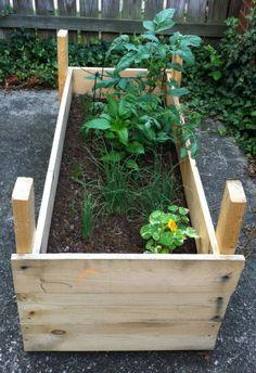 Mini Raised Garden Planter