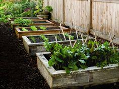 Install Raised Garden Beds