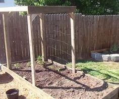 Garden Bed CHEAP!