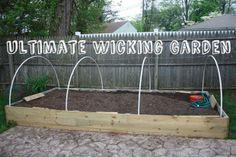 Ultimate Auto-Wicking Garden