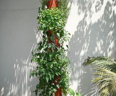 DIY Organic Vertical Planter