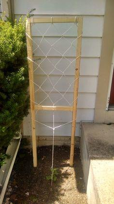 100 Free Trellis Plans At Planspin Com To Build