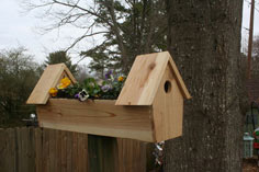 double bird house planter