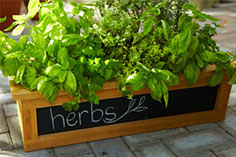 Build a Chalkboard Planter Box
