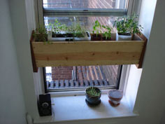 Herb planter box