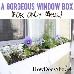 cedar window box