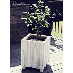 planter box tutorial